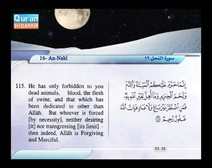 Recited Quran with Translating Its Meanings into English (Audio and video – Part 14 - Episode 8)