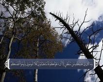ترجمه صوتی تصویری قرآن حکیم ( 014 ) سوره ابراهيم