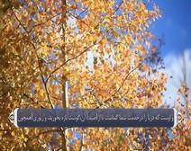 ترجمه صوتی تصویری قرآن حکیم ( 016 ) سوره نحل