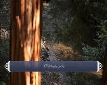 ترجمه صوتی تصویری قرآن حکیم ( 027 ) سوره نمل
