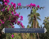 ترجمه صوتی تصویری قرآن حکیم ( 030 ) سوره روم