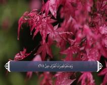 ترجمه صوتی تصویری قرآن حکیم ( 037 ) سوره صافات