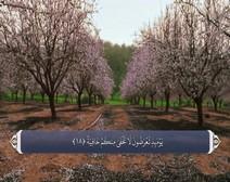 ترجمه صوتی تصویری قرآن حکیم ( 069 ) سوره حاقه