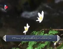 ترجمه صوتی تصویری قرآن حکیم ( 071 ) سوره نوح