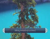 ترجمه صوتی تصویری قرآن حکیم ( 088 ) سوره غاشيه