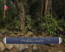 ترجمه صوتی تصویری قرآن حکیم ( 092 ) سوره ليل