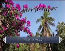 القرآن الكريم - آية آية - مع ترجمة معانيه إلى اللغة الفارسية ( 105 ) سورة الفيل