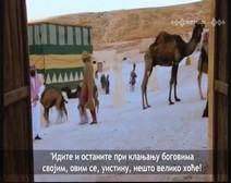 Биографија посланика Мухаммеда 10 (Година велике жалости)