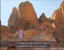 قصص الأنبياء ( الحلقة 06 ) قصة صالح عليه السلام